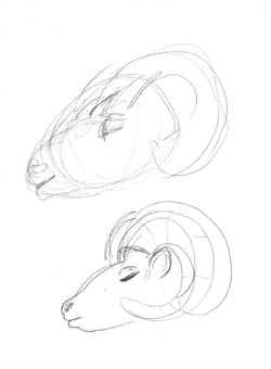Studies for the Ram head...